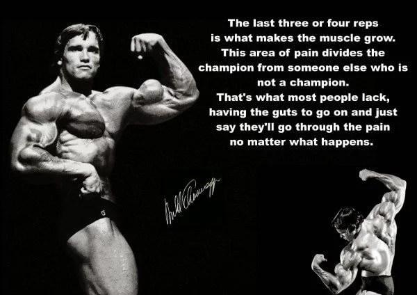 Arnold Schwarzenegger is an inspiration to bodybuilders everywhere.