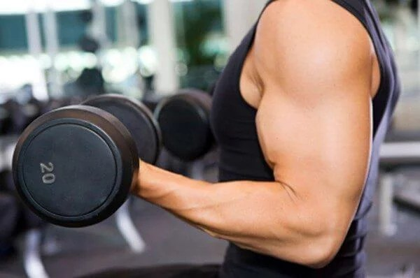 If you train more efficiently, you will gain muscle faster.