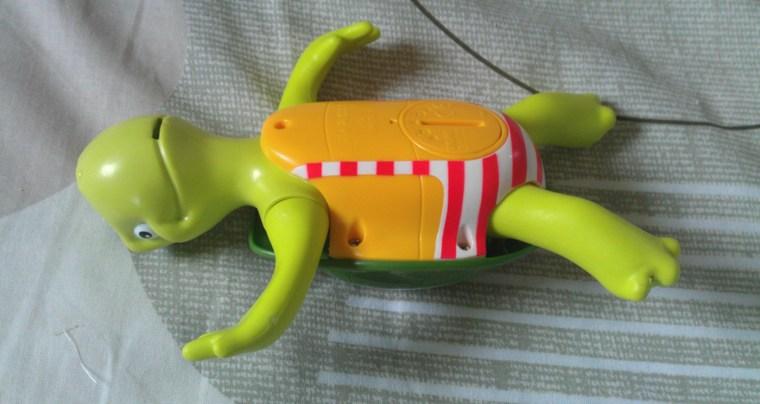 ventre-grenouille