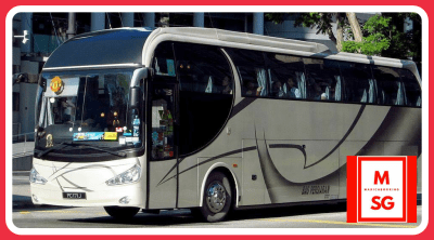 Hotline for coach bus charter services
