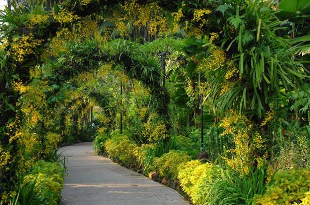 NOG3 300x199 National Orchid Garden in Singapore