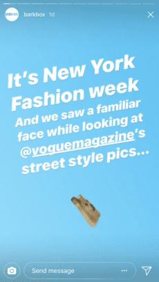 10 e-Commerce Brands Using Instagram Stories Effectively Instagram  image22-337x600