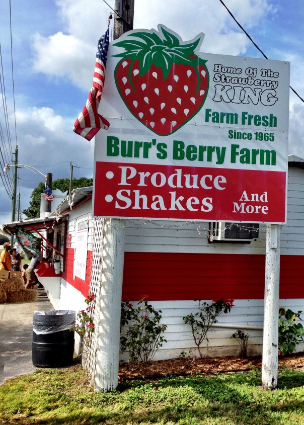 Burr's Berry Farm is located at 12741 SW 216th Street in Miami. 305.251.0145