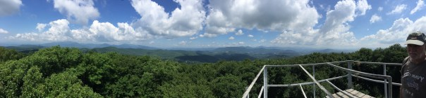 View from the top of the fire tower.