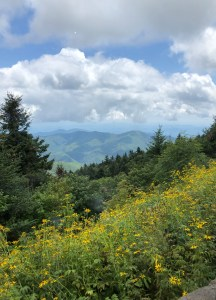 View from Mount Mitchell State Park, NC