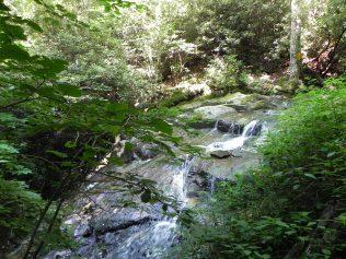 NC.Glen Burney Trail