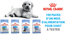 Test Produit Conso Animo : Croquettes Royal Canin Puppy