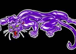 Purple Panther: illustration by Maxine Miller