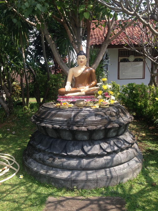 Buddha-vipassana-2