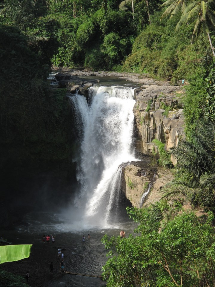 Вид на водопад Тегенунган сверху