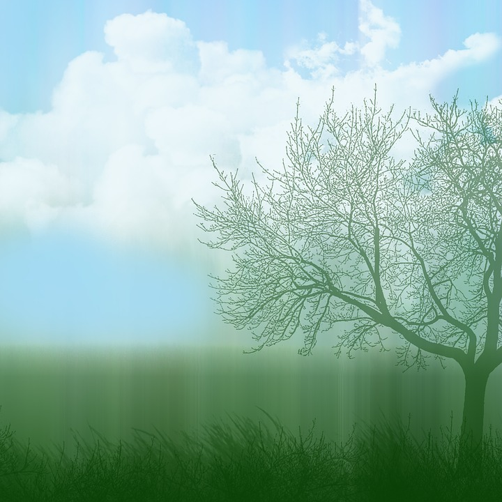 Background, Air, Clouds, Grass, Tree, Blue Sky, Cloud