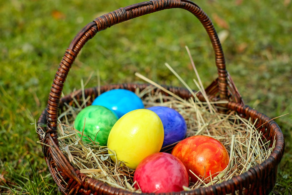 Image result for small eggs