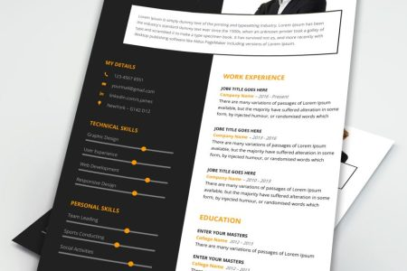 Free   Premium Perfect MS Word Resume Template MS Word Resume Template