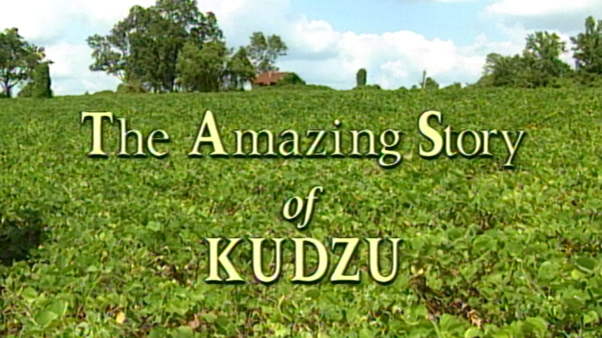 1996 Documentary Tells  Amazing Story of Kudzu