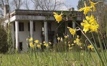 Sweet Home Alabama - 19th century homes in Alabama