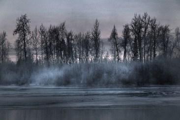 Arctic Edge