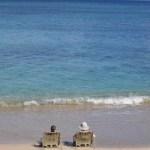 hawaii beach medium