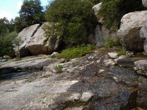 01 P1020209 raccourci sanctuaire Lluc rochers karstique