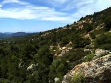 2014-07-12 Ruta dels Refugis (104) Cami dels Cartoxans débur