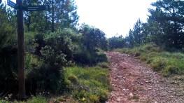 2014-07-12 Ruta dels Refugis (139) Bifurcation Cami Ca la Susagna