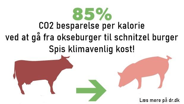 Klimavenlig kost