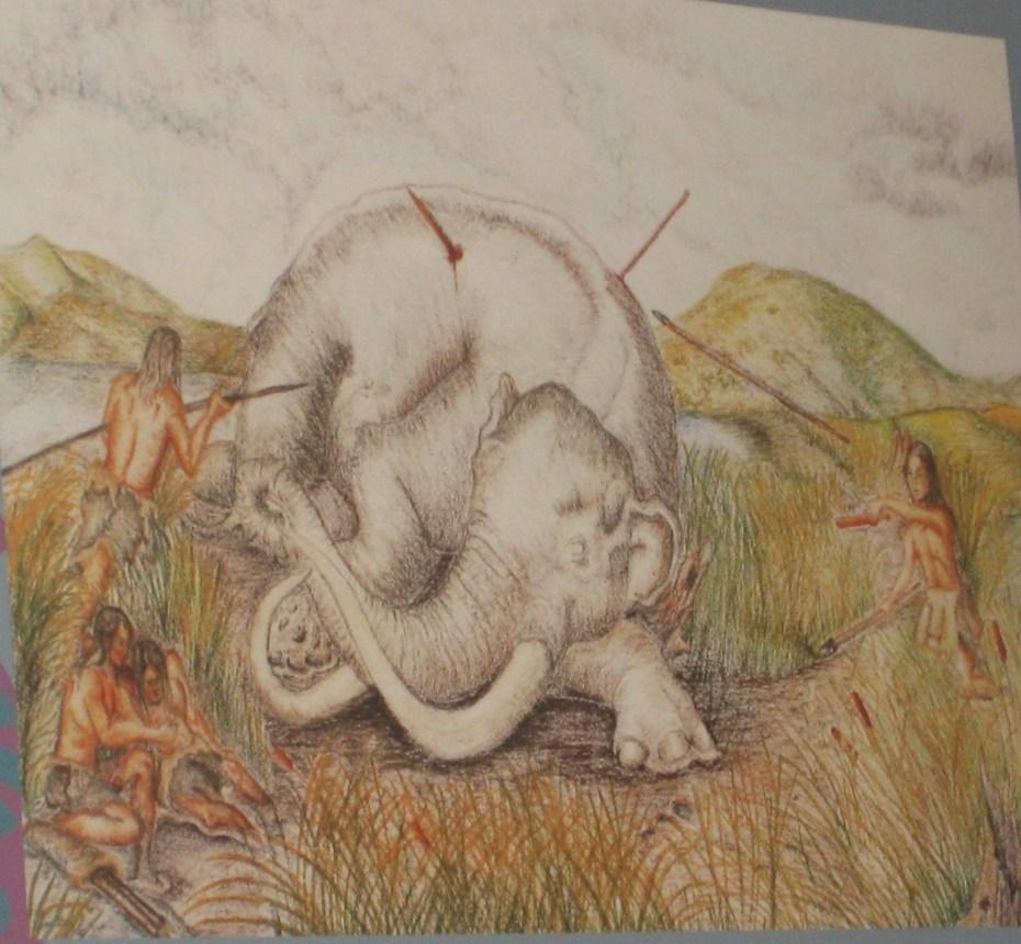 disposición en que se halló el mamut en chimalhuacán