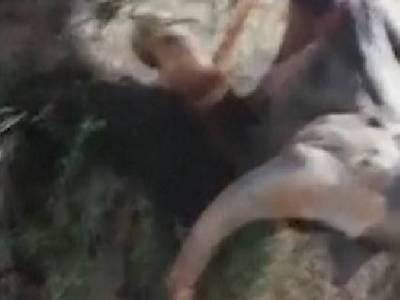 elefante rescatado