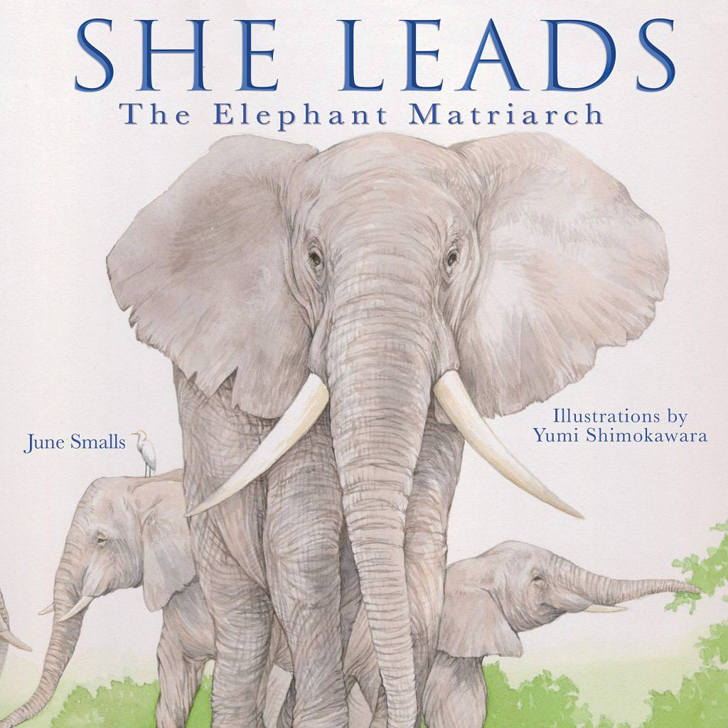 She Leads The Elephant Matriarch by June Smalls book cover