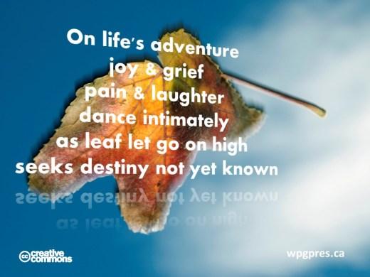 Life's Adventure