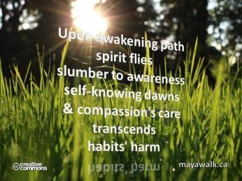 Awakening Path