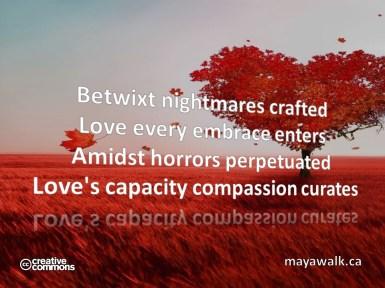 Compassion Curates