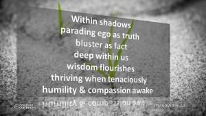 Compassion Awake