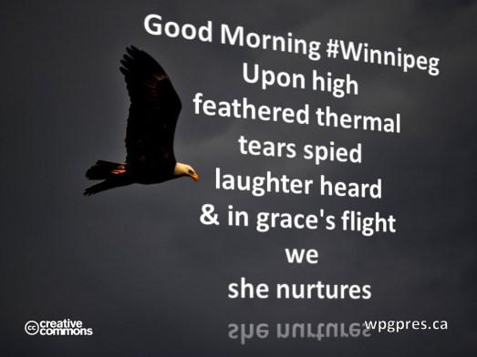 She Nurtures