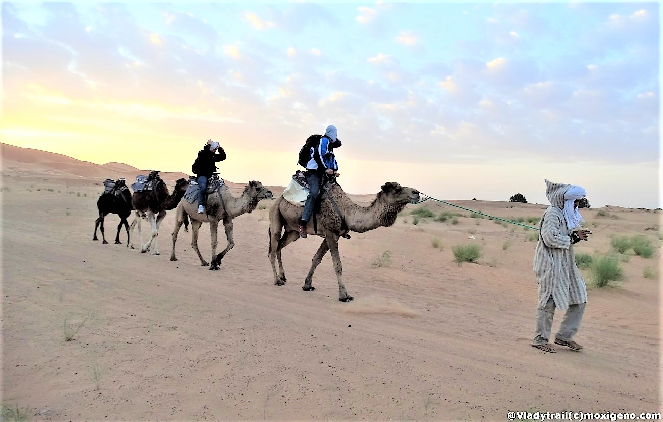 SAHARA: VIAJE Y AVENTURA EN MERZOUGA, MARRUECOS. GUÍA ALOJAMIENTO, EXCURSIONES Y FOTOS TRAS FALCODESERT