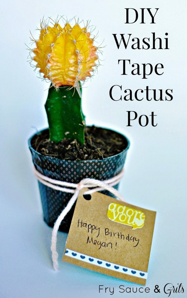 DIY Washi Tape Cactus Birthday Gift Fry Sauce and Grits