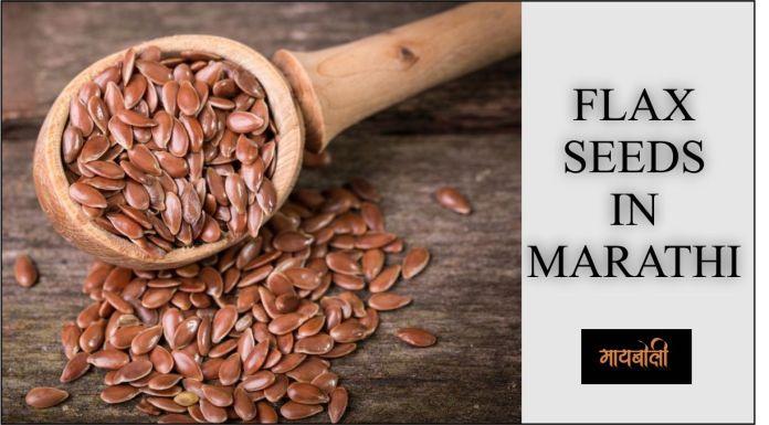 flax seed in marathi