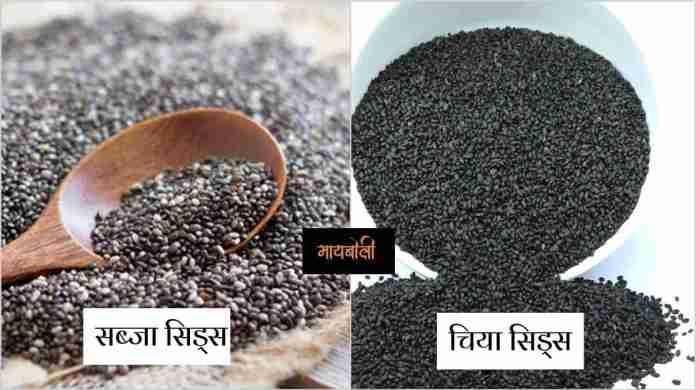 chia seeds in marathi