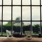 window - pixabay