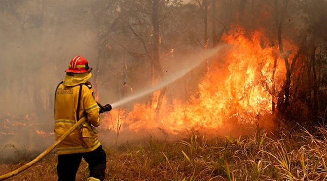 Our government is trying to hide that the bushfires are unprecedented