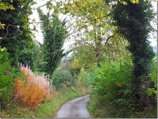 Slack Lane