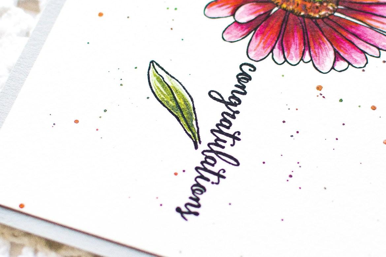 Hero Arts Watercolor Daisy Card-May Park -3