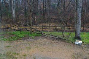 aftermath of rainstorm