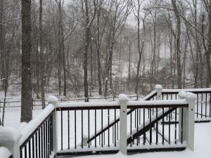 snowday20140303