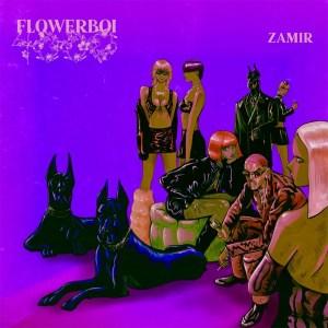 Zamir ft Mannywellz – FLY