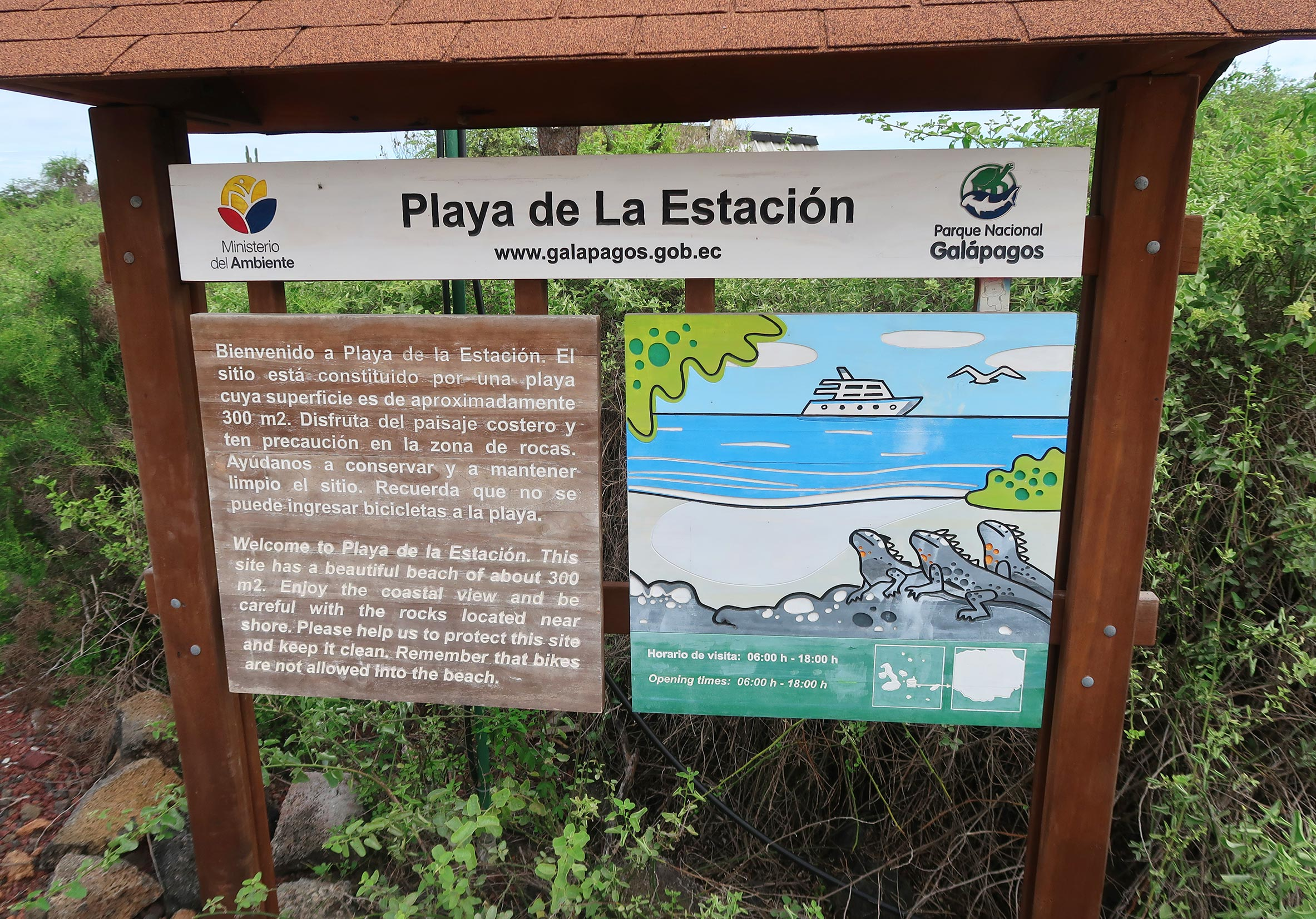 playa de la estación