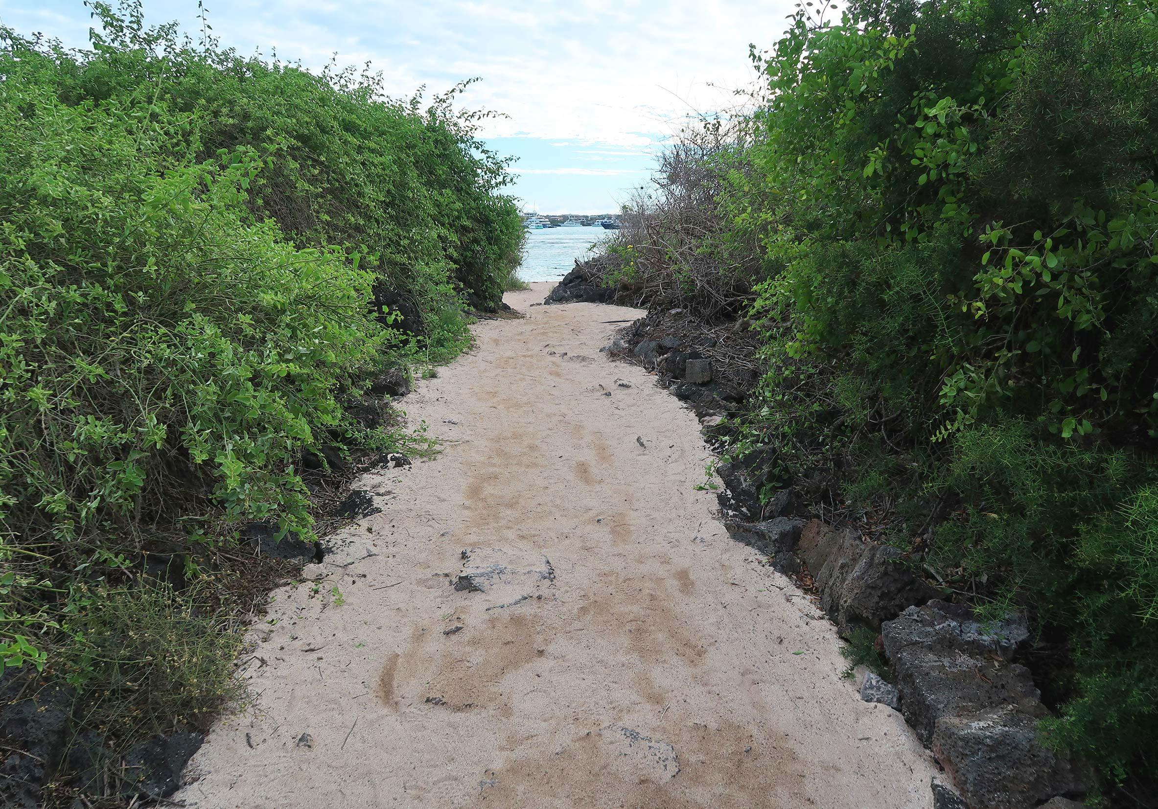 playa de la estacion galapagos