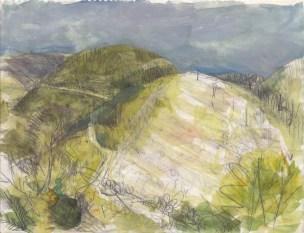 Belorus Grove, 2011 - Chanan Mazal