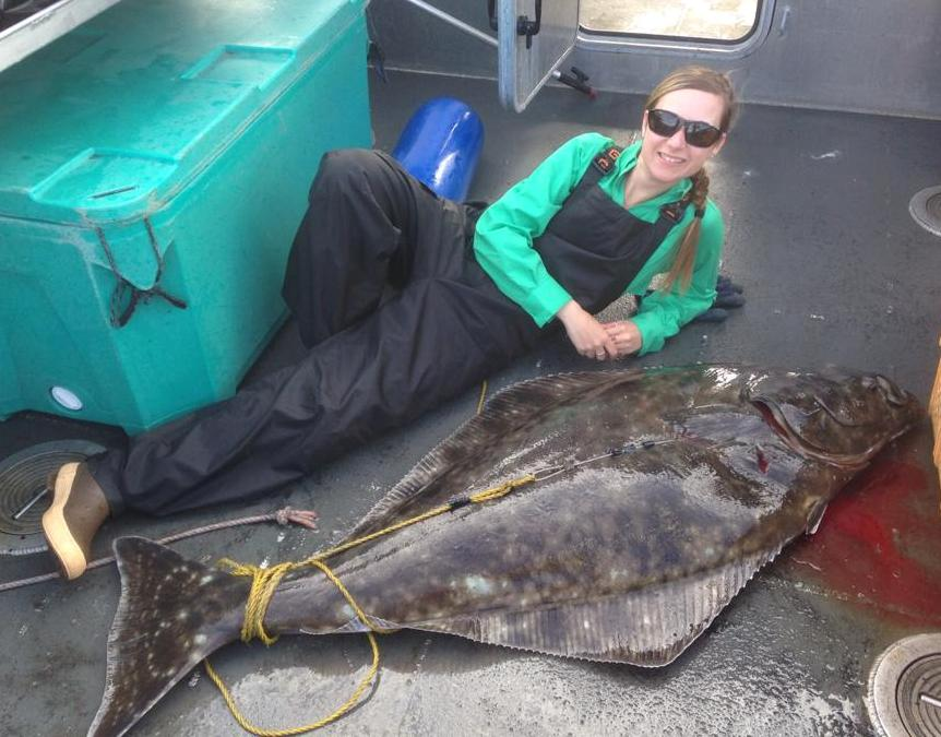 maries halibut2
