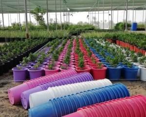 مراكن زرع للبيع