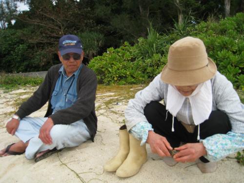 エスカルゴ夫妻と浜辺で再会